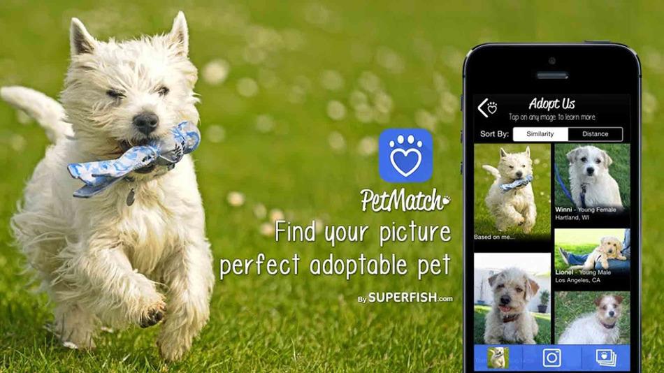 App Petmatch iOS