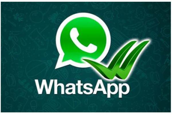 app whatsapp android